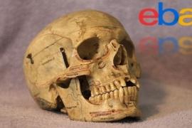 Itens macabros vendidos no Ebay