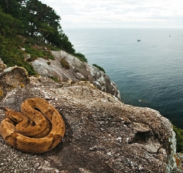 O Brasil tem a ilha mais mortal do mundo