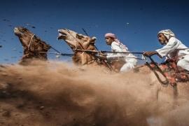 As 10 melhores fotos de 2015, segundo a National Geographic