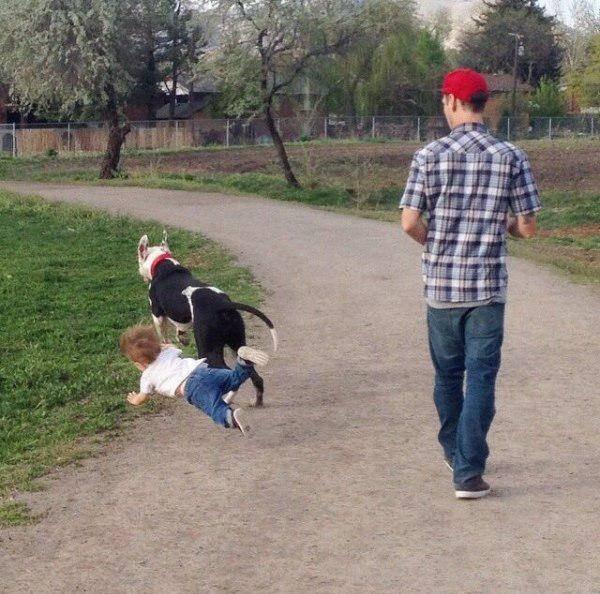 criança caindo com cachorro
