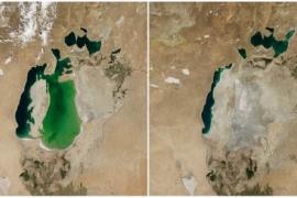 O reflexo da degradação ambiental na natureza