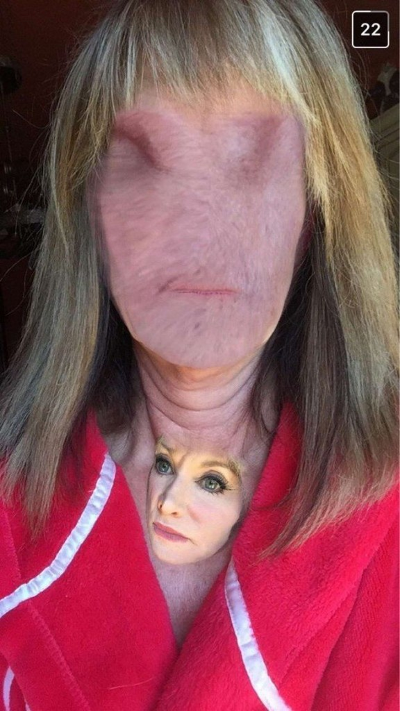 face swap 16