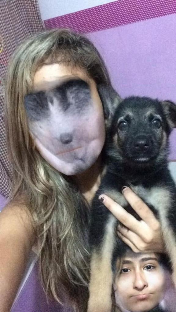 face swap 4