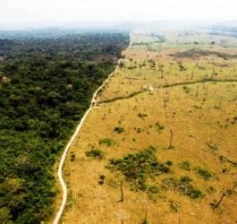 5 provas de que estamos ameaçados com a mudança climática