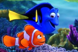 10 erros que talvez você não tenha percebido no filme Procurando Nemo