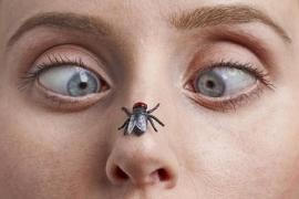 4 tipos de pessoas que os mosquitos mais picam, segundo cientistas
