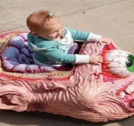 7 brinquedos bizarros que seus filhos não devem ter