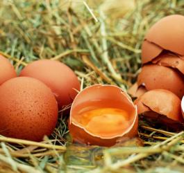 9 alimentos que você achava que não eram saudáveis, mas são
