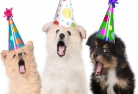 Como surgiu a comemoração do aniversário?