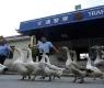 6 coisas bizarras que você só encontra na China