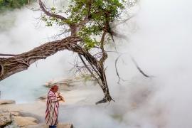 Este rio na Amazônia mata tudo que cai nele!